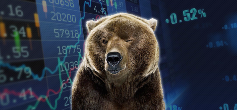Understanding Bear Market; A guide to evade the bear attack! Part 1
