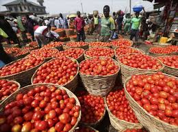 Tomato Jos secures Series A round funding of €3.9m
