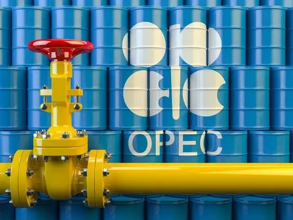 OPEC+ compliance with oil cuts rises to 113% in February, sources say