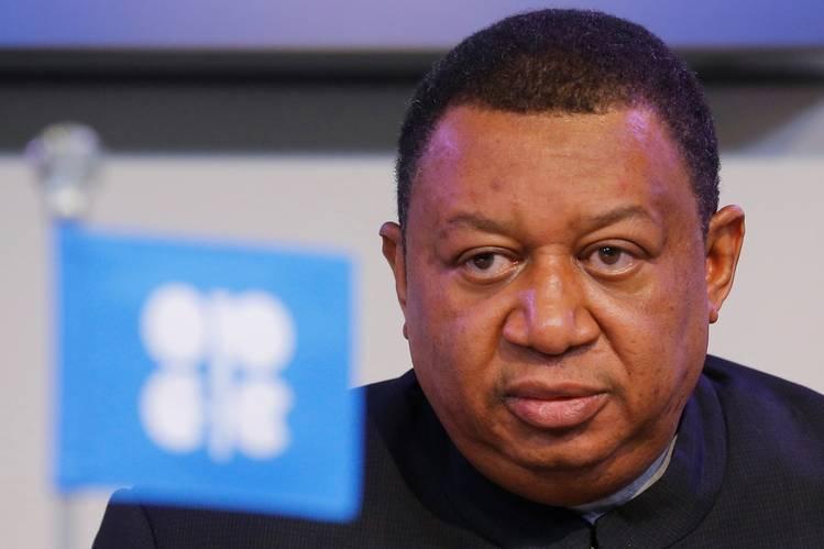 Gas is vital to Nigeria's future – OPEC