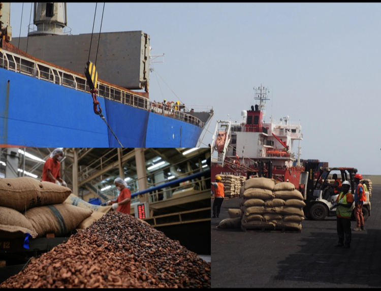 Calabar Port ships first cocoa export to United States, 14 yrs after concession