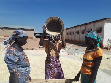 Nestlé partners IDH,  TechnoServe  for improved livelihoods for smallholder farmers